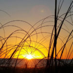 sunset in redington shores