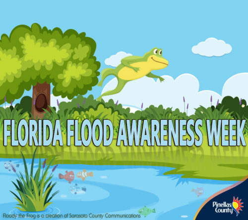 Did you know that many areas in Pinellas County are potentially prone to some amount of flooding from excessive rainfall or tidal influences? Property owners need to know their flood risk. Go to bit.ly/PinellasKnowYourFloodRisk to find yours. #FloodyTheFrog #FloridaFloodAwarenessWeek
