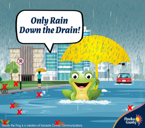 Protect our natural floodplain functions. Keep swales and drainage ditches clear of debris to ensure water flow. Report the dumping of materials to pinellascounty.org/reportanissue. Learn more about natural floodplains at bit.ly/PinellasFloodplain. #FloodyTheFrog #FloridaFloodAwarenessWeek